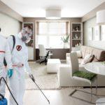 Обработка от насекомых и грызунов - цена услуги