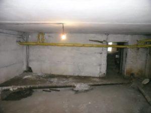 фото подвал без крыс и мышей