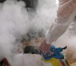 отзывы о профессиональной санитарной службе против тараканов в екатеринбурге